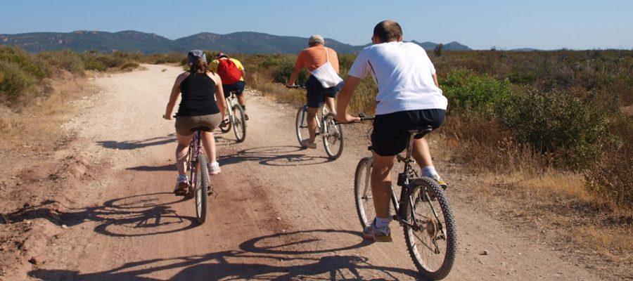 Mountain biking session